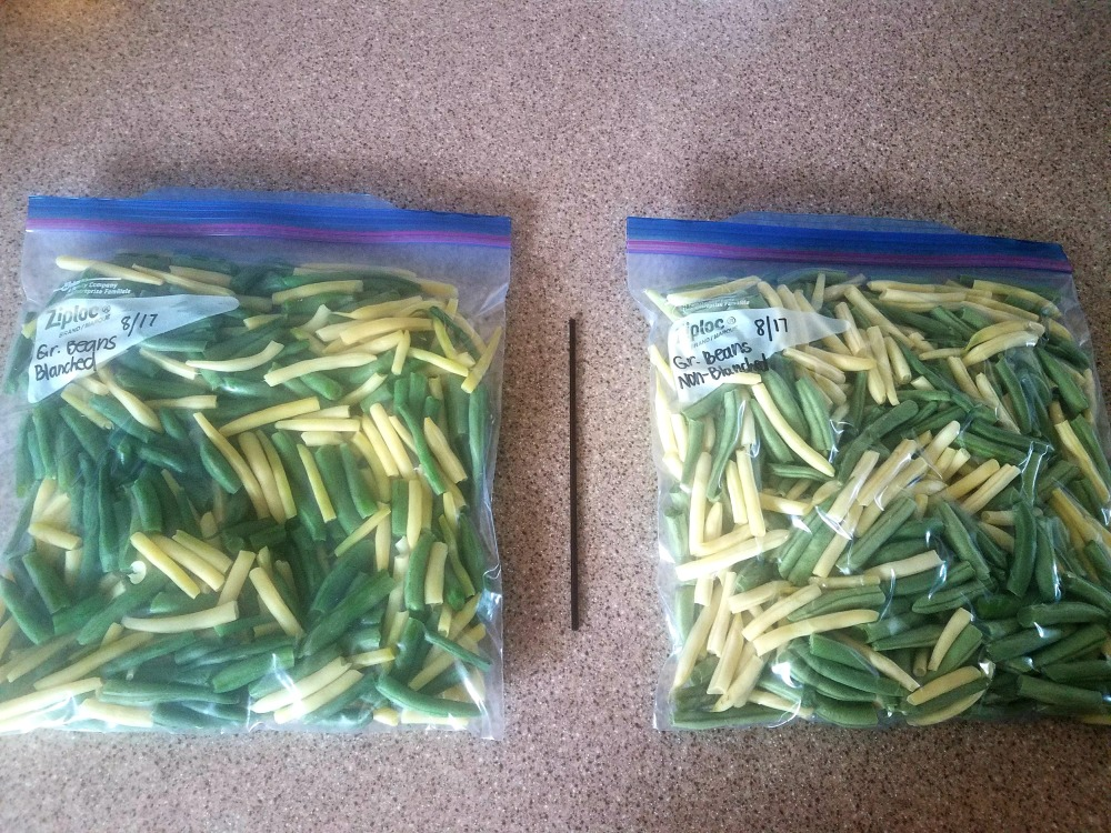 Green Beans Side by Side.jpg